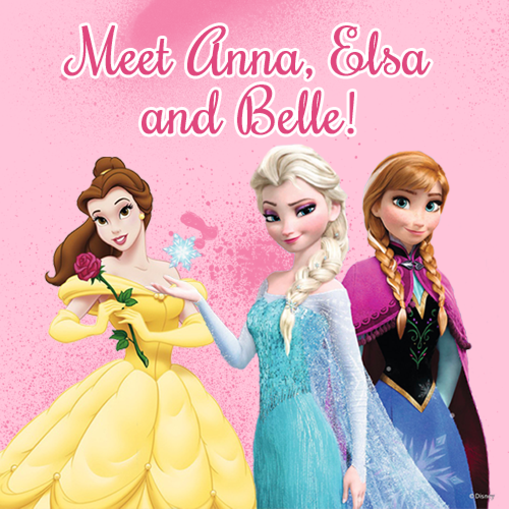 Meet Anna, Elsa, and Belle at palisades Credit Union Park during the Rockland Boulders Pink in the Park Event!
