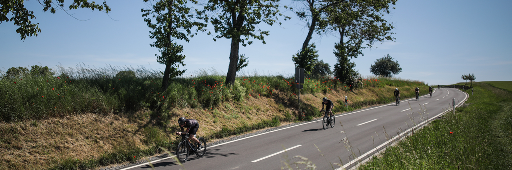 Athletes biking behind each other on a street next to a small avenue of trees and red poppies at 5150 Kraichgau