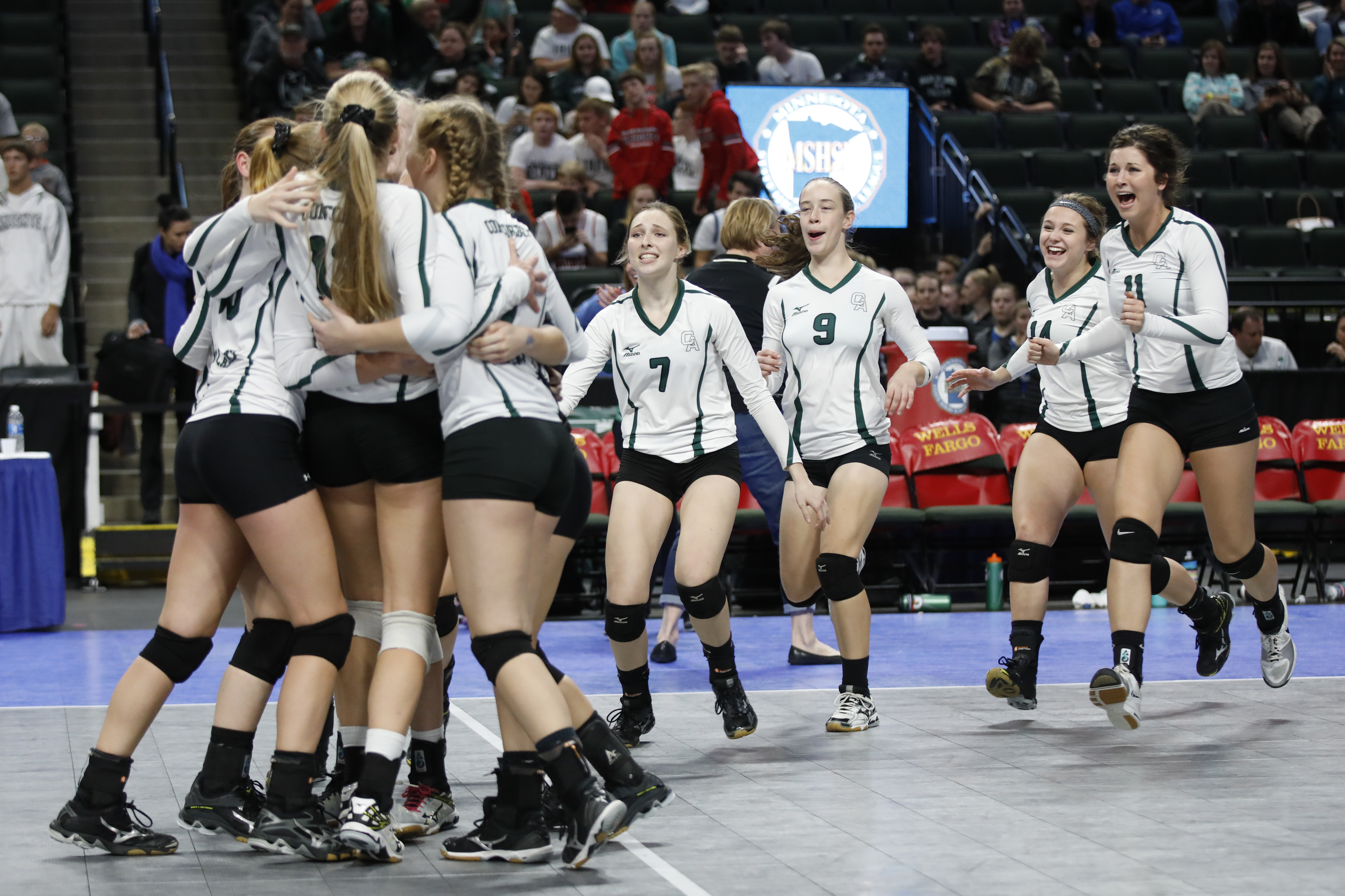Concordia players rush the court after the upset over Kenyon-Wanamingo. Concordia defeated Kenyon in the final set in a close game in the 2A semi-finals at the Xcel Energy Center. Photo by Chris Juhn