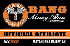 Muay Thai classes available