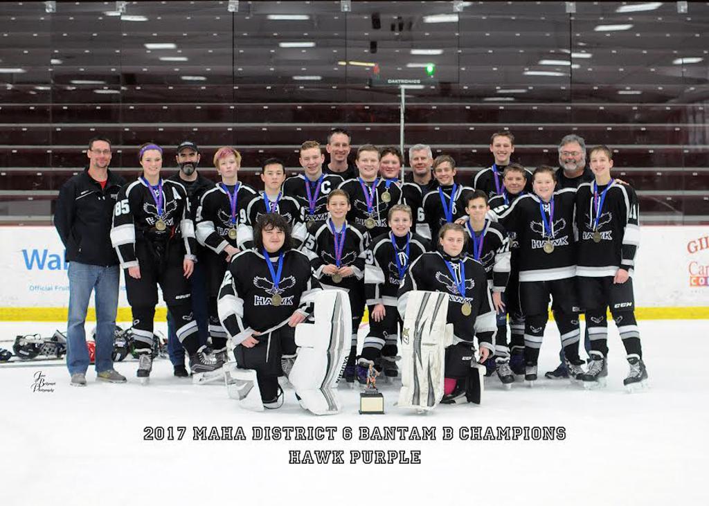 2017 District 6 Champions!  Bantam 1 purple
