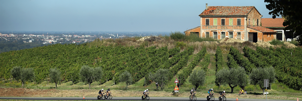 Athletes biking next to fields through the countryside of Romagna on a hill with views of the city center