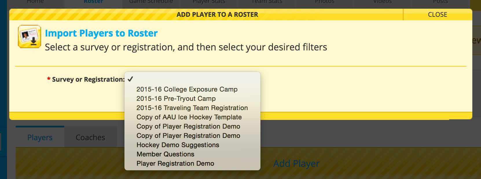 Tool creates rosters in a flash – Hockey Roster Template