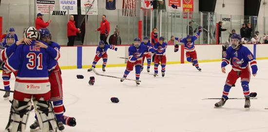 Wny amateur youth hockey leagues