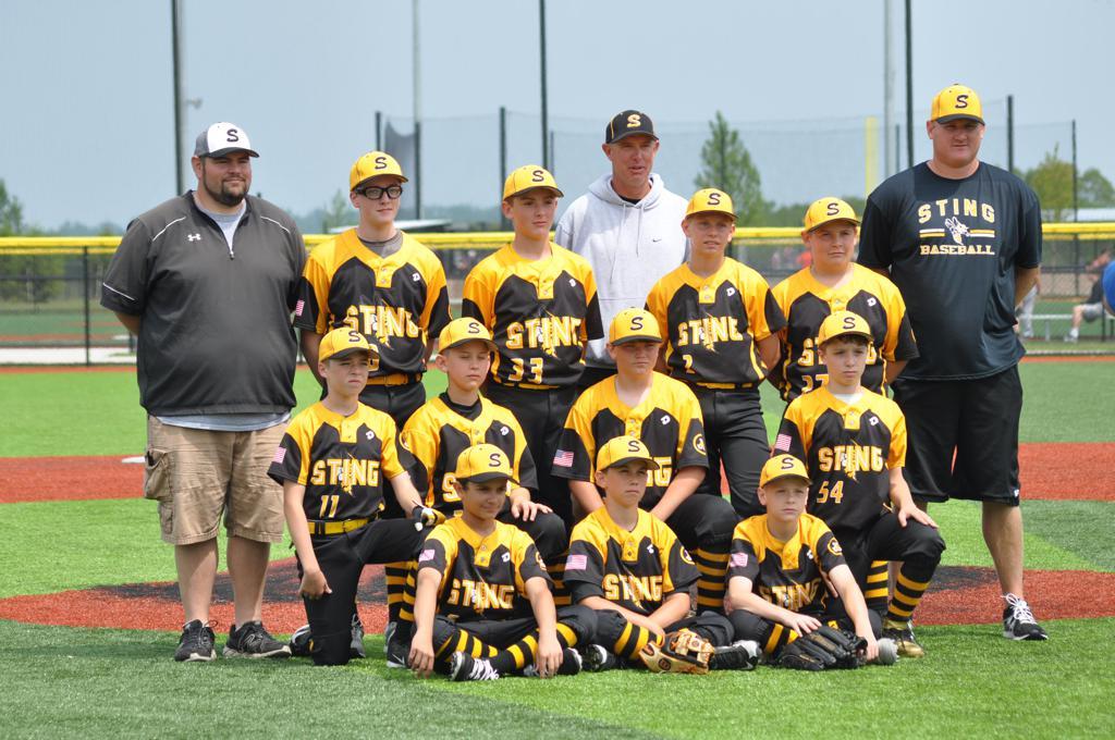 Dayton Sting Baseball
