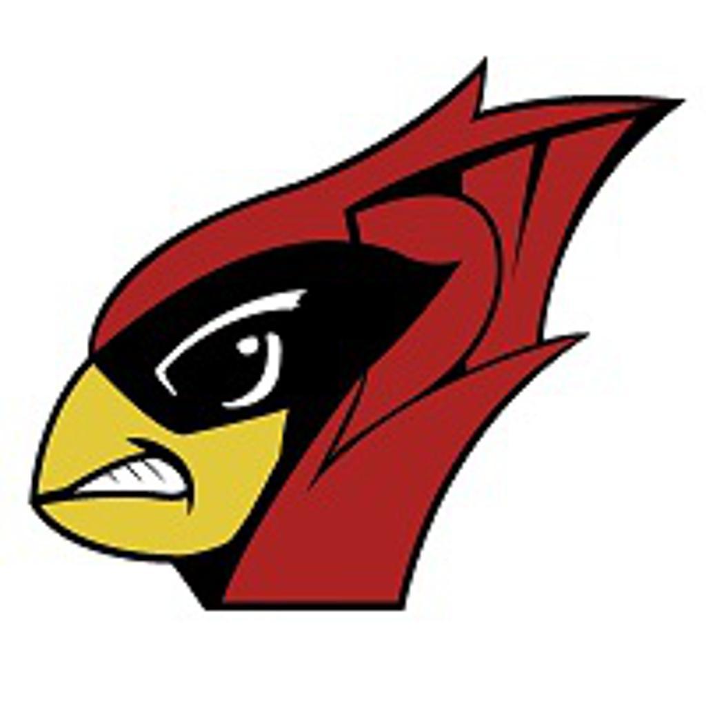DV Cardinals 12u
