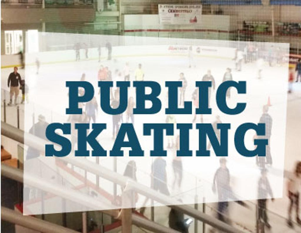 Image result for public ice skating