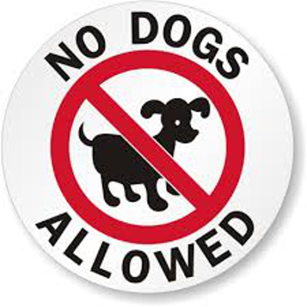 Sorry!  No dogs allowed at Harvest Cup