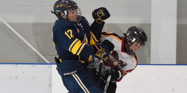 hockey bodycheck
