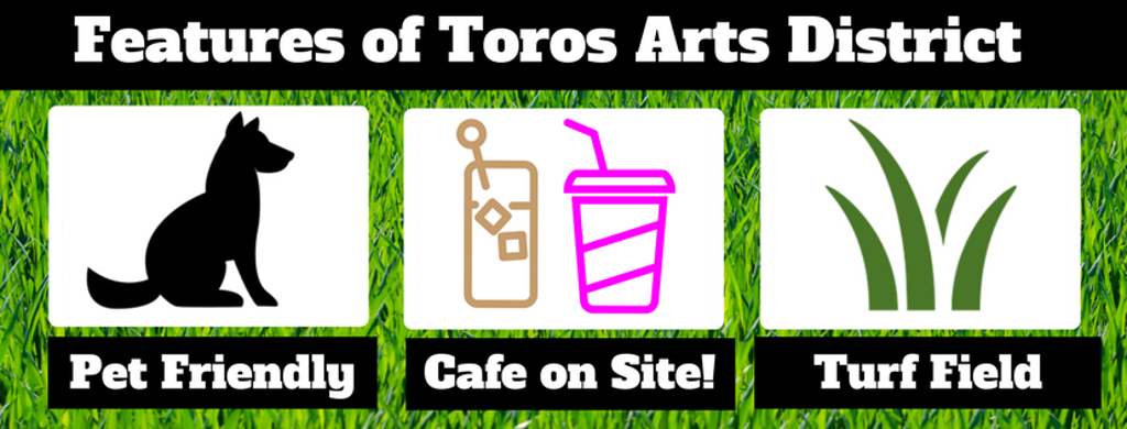 Toros Arts District Soccer