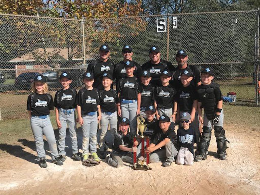 PV 8U AB Team Takes Home the Winter Blitz Tourney Trophy!