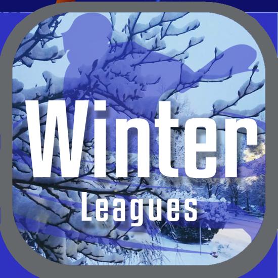 New Wave Winter Lacrosse Indoor Leagues