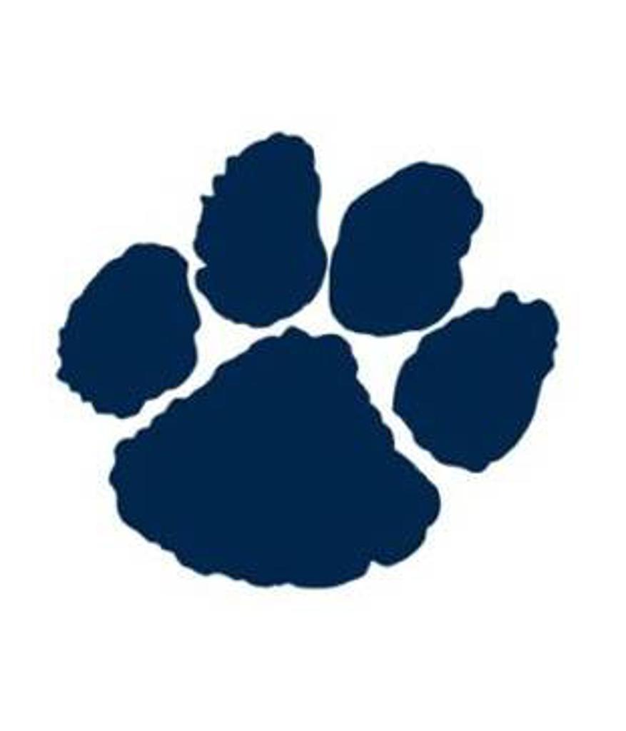 Pittsford Panthers Logo