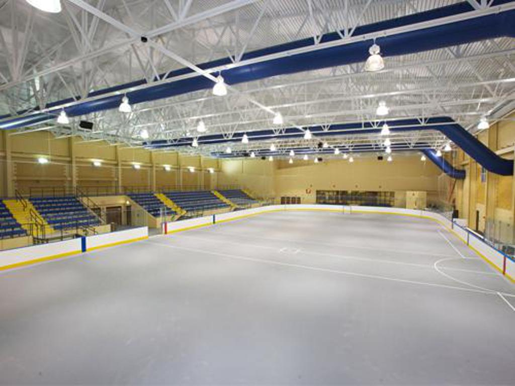 Photo of Allegany Community Center Playing Surface