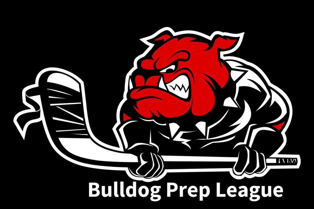 NEW!  AAA Prep League