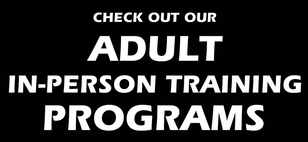 Check Out Our Adult In-Person Training Programs