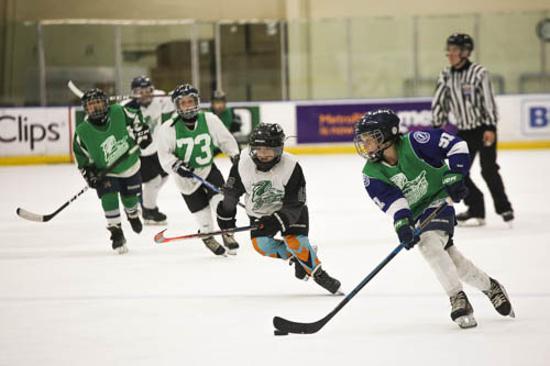 Junior Everblades Hockey Association