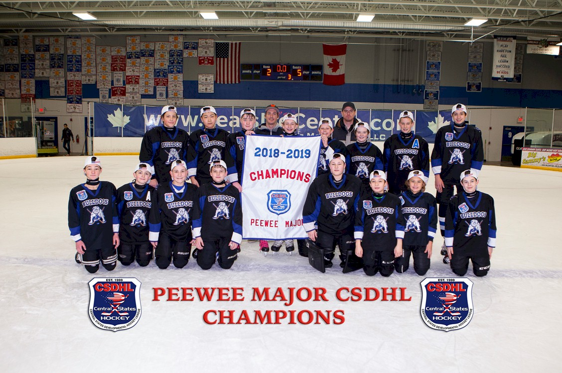 2019 CSDHL PeeWee Major Champions Chicago Bulldogs
