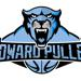 Howardpulley small