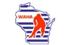 Sponsored by Wisconsin Amateur Hockey Association (WAHA)