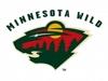 Sponsored by Minnesota Wild (NHL)