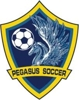 Sponsored by Pegasus Soccer