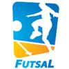 Sponsored by Futsal East - Futsal League