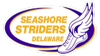 Seashore striders logo3 1 element view