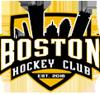 Boston hockey club element view