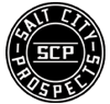 Salt city prospects element view