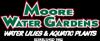 Sponsored by Moore Water Garden