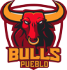 Sponsored by Pueblo Bulls