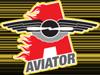 Sponsored by New York Aviators