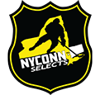 Nyconn selects element view