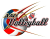 Aau vball logo transparent element view