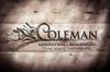 Coleman renovation   remod element view