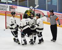 Linemates celebrate after goal