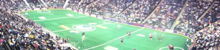 Minnesota Swarm Suite Level View